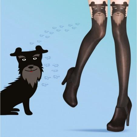 Collants chien